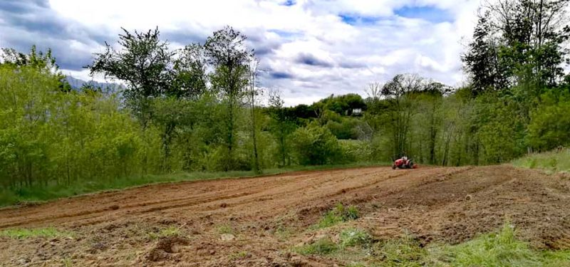 Lavoro nei campi, agritutismo in Garfagnana